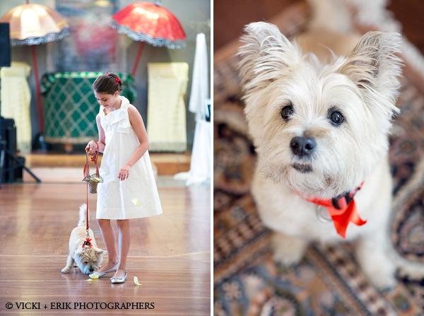 san_francisco_ca_wedding
